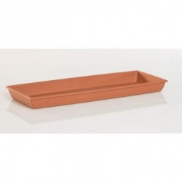 ACEITE ANTORCHAS BIOLOGICO...